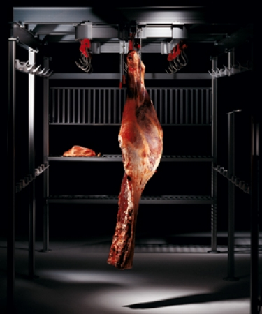 Guideways: meat rail systems